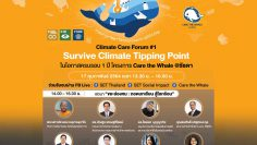 SET-Social-Impact-Care-the-Whale